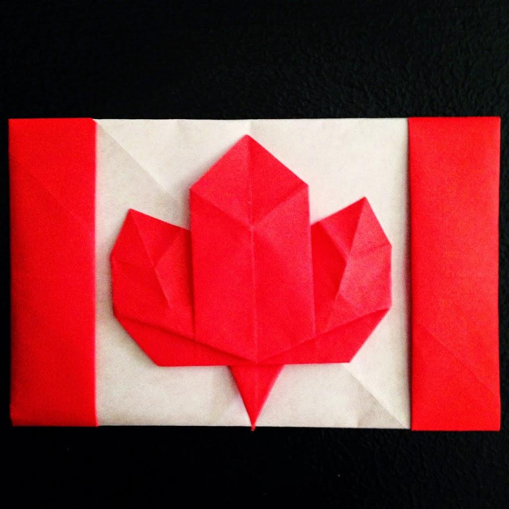 lafosse u0026 alexander u0027s origami flowers kit yuki origami